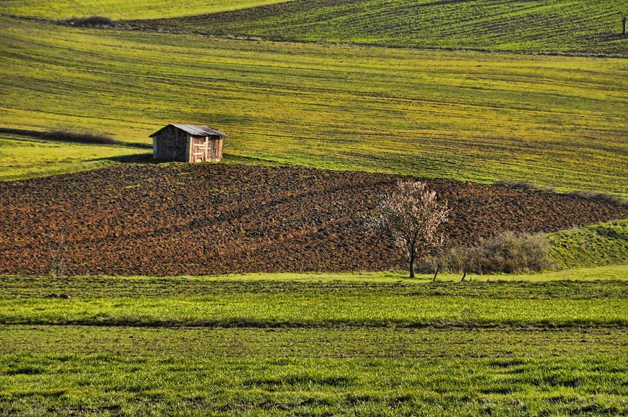Maria-Athanasiou-photography-Larisa-landscape-04